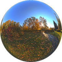 """Ogród Botaniczny w Łodzi jest jednym z największych ogrodów w Polsce - jego całkowita powierzchnia wynosi 67 ha. Położony jest w dzielnicy Polesie, sąsiaduje z parkiem im. J. Piłsudskiego, Ogrodem Zoologicznym oraz rezerwatem leśnym """"Polesie Konstantynowskie""""."""