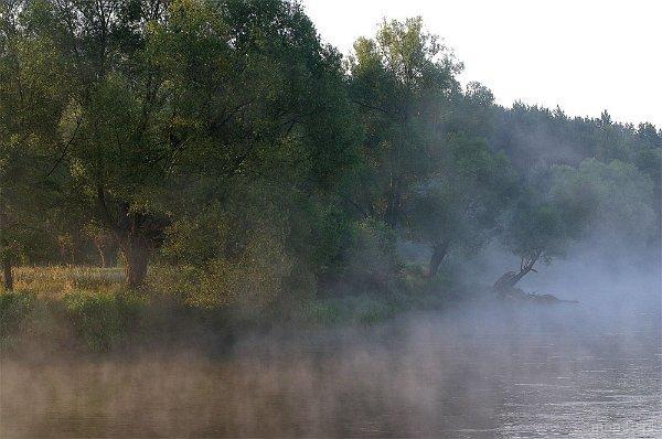 Przyroda. Rzeka.