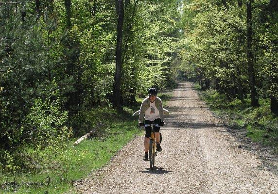 Turysta rowerowy na szlaku turystycznym.