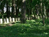 Czyżyków. Cmentarz wojenny niemiecki z I wojny światowej w Czyżykowie (fot. Łukasz Konieczny)