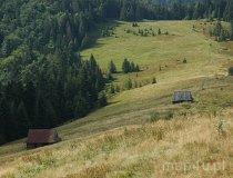 Gorczański Park Narodowy (fot. Piotr Wojtaszek)