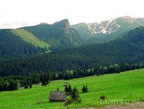 Tatrzański Park Narodowy. Dolina Kondratowa (fot. Marek i Ewa Wojciechowscy)