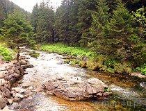 Tatrzański Park Narodowy. Dolina Kościeliska (fot. Marek i Ewa Wojciechowscy)