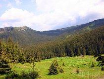 Tatrzański Park Narodowy. Dolina Olczyska (fot. Marek i Ewa Wojciechowscy)