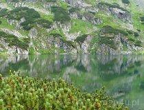 Tatrzański Park Narodowy (fot. Karolina Gizara)