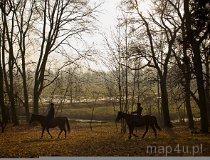Walewice. Łódzki Szlak Konny - końska dawka przygody. (fot. Radosław Józwiak)