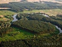 Załęczański Park Krajobrazowy. Wronia Woda, starorzecze Warty (fot. Kacper Dondziak)