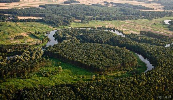 Załęczański Park Krajobrazowy. Wronia Woda, starorzecze Warty