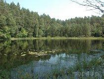 Drawieński Park Narodowy. Jezioro w parku (fot. Piotr Wojtaszek)