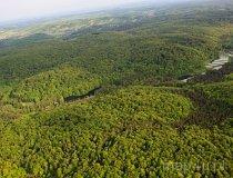Rezerwat Parkowe (fot. Kacper Dondziak)