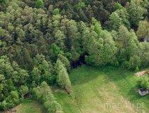 Radoszewnica. Rezerwat Borek (fot. Kacper Dondziak)