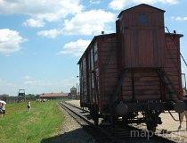 Brzezinka. Wagon bydlęcy do przewożenia internowanych w  Hitlerowskim Obozie Koncentracyjnym (fot. Piotr Wojtaszek)