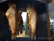 Wędzona ryba z Niechmirowa. (fot. Marta Pabich-Makoska)