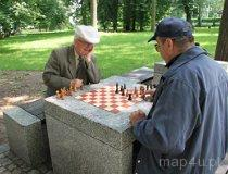 Seniorzy w parku w Częstochowie (fot. Daria Konieczna)